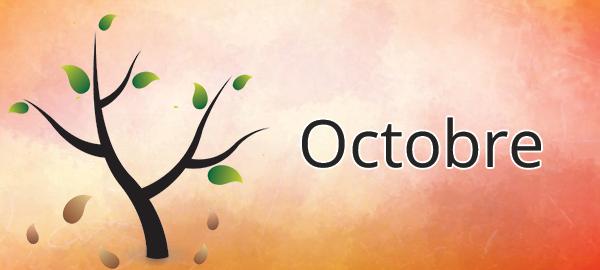 Potager mois par mois : octobre