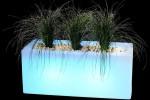 Jardinière lumineuse
