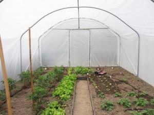 Serre de jardin largeur 4 m