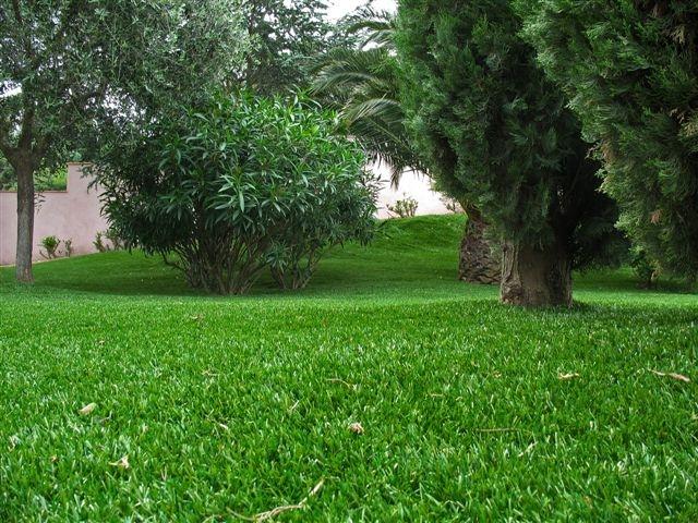 Gazons artificiels nouvelle gammes blog jardin couvert for Jardin couvert