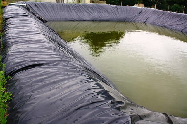 Bâche bassin