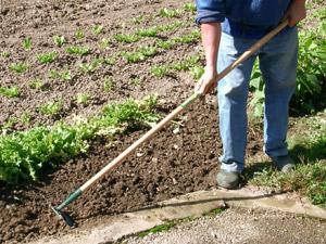 Biner le sol