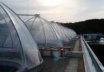 Projet Ecotron - structure sur-mesure