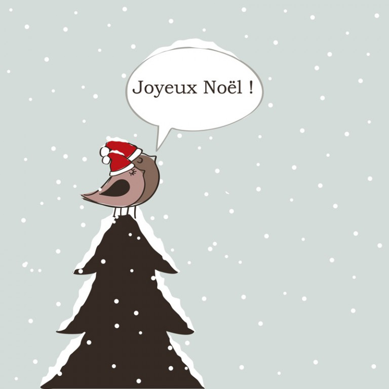 Oiseaux de Noël cartoon