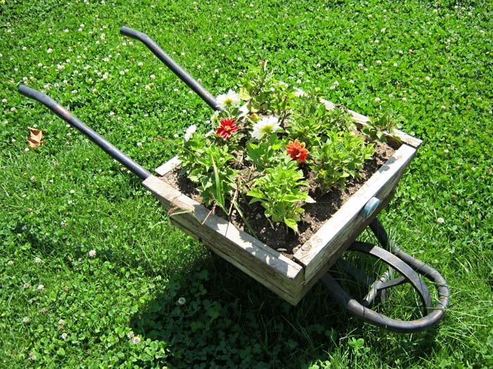 technique jardinage astuces et id es permettant de