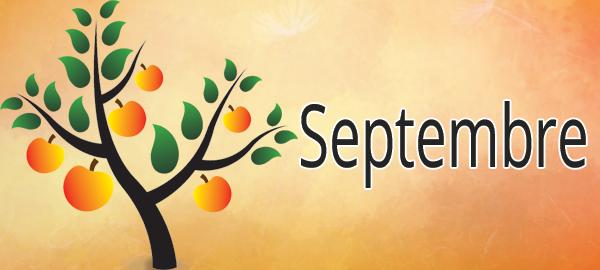 Potager mois par mois : septembre