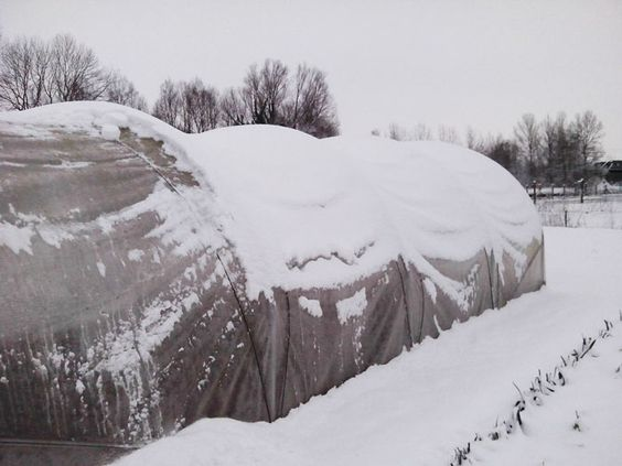 Serre en montagne, sous la neige