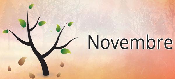 Potager mois par mois : novembre