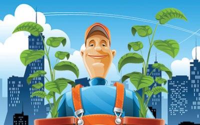 Le jardinage sur les toits