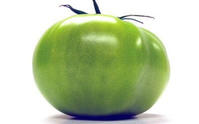 La tomate, fruit ou légume ?