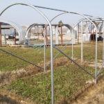 Serre de jardin Atlantic largeur 2 mètres