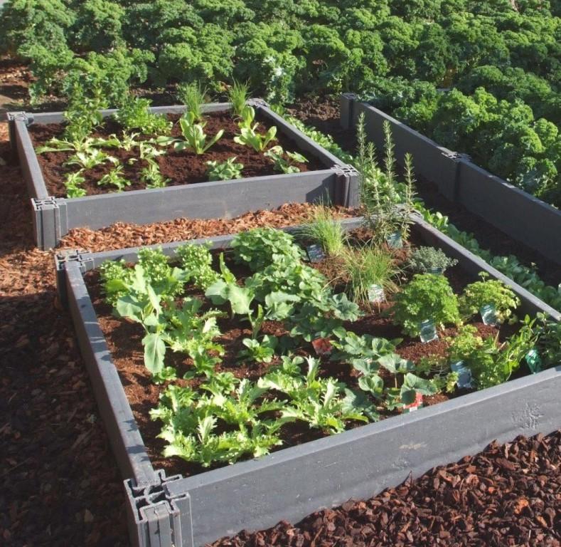 Carr s potager un produit recycl et cologique au jardin - Faire un petit potager en carre ...