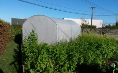Vos photos : serre de jardin largeur 3 m
