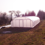 Serre tunnel angevine largeur 6 m