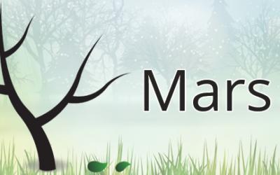 Que prévoir en mars au jardin ?