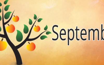 Que faire en septembre au potager ?