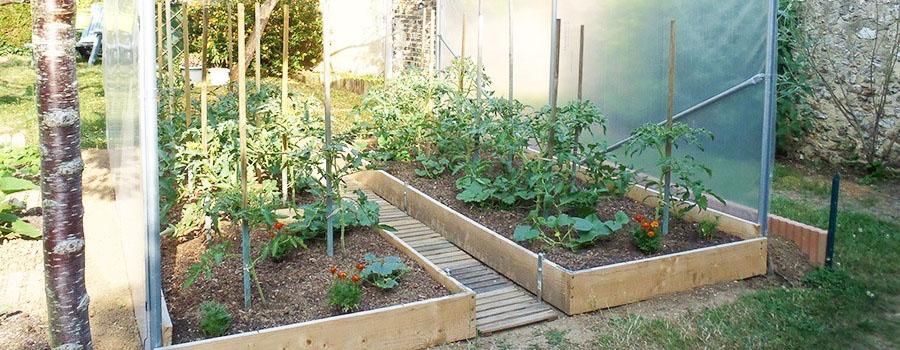 cultiver-tomates-serre