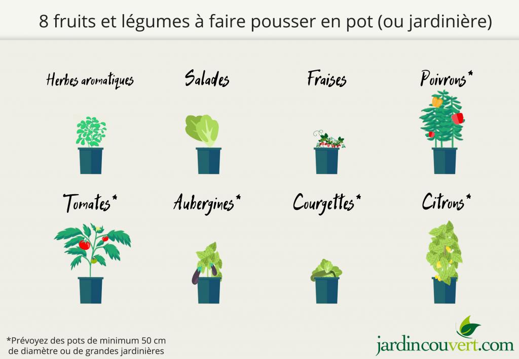 Fruits et légumes qu'on peut faire pousser en pots