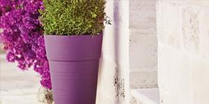 Pots décoratifs Chapelu : du nouveau