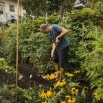 Comment préparer son jardin avant de partir en vacances ?