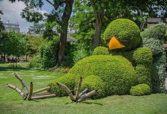 oiseaux jardin
