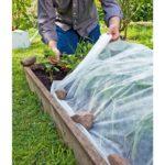 Protégez votre récolte grâce au voile d'hivernage