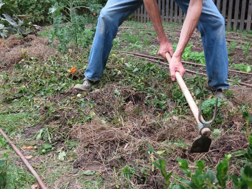travaux jardin avril