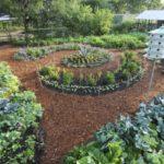 Comment créer son jardin en permaculture ?