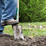 Quels sont les travaux de jardinage à faire en septembre ?