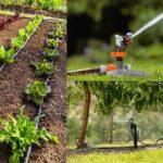 Les systèmes d'arrosage pour votre jardin