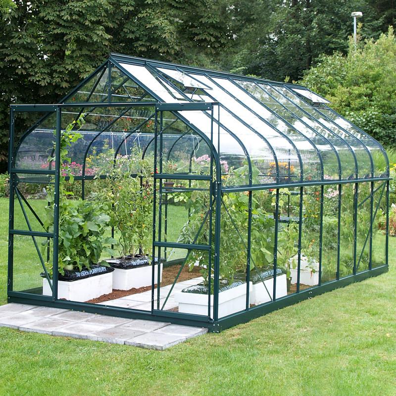 serre de jardin en verre aloé