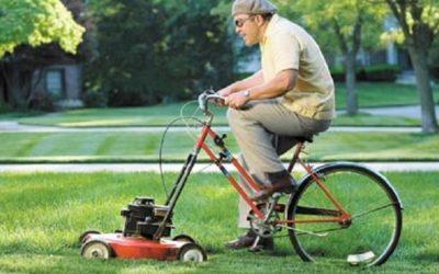 Quels sont les horaires pour tondre sa pelouse?