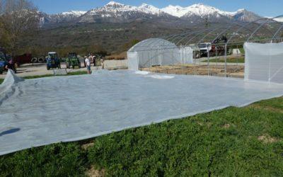 Comment installer une serre tunnel de jardin ?