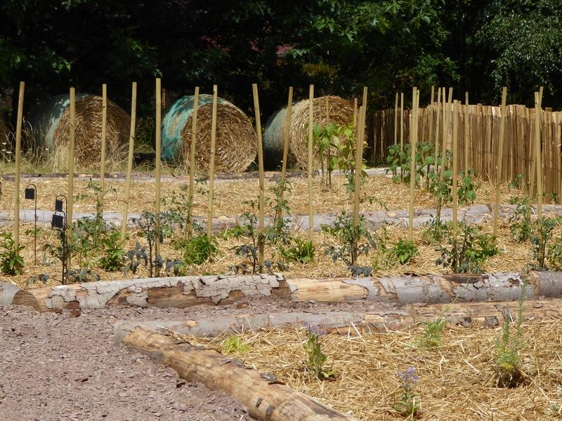 paille-jardin-potager