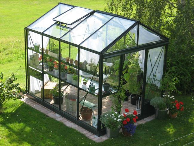 Plantes aromatiques sous serre : bienfaits et avantages de les cultiver