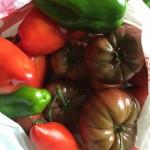 Tomates produites sous serre tunnel