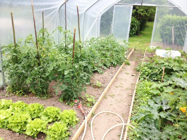 Serre de jardin Richelieu