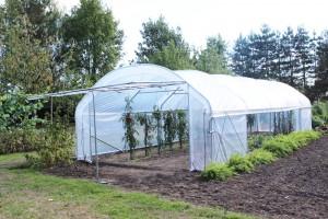 Serre de jardin Richelieu largeur 4 m