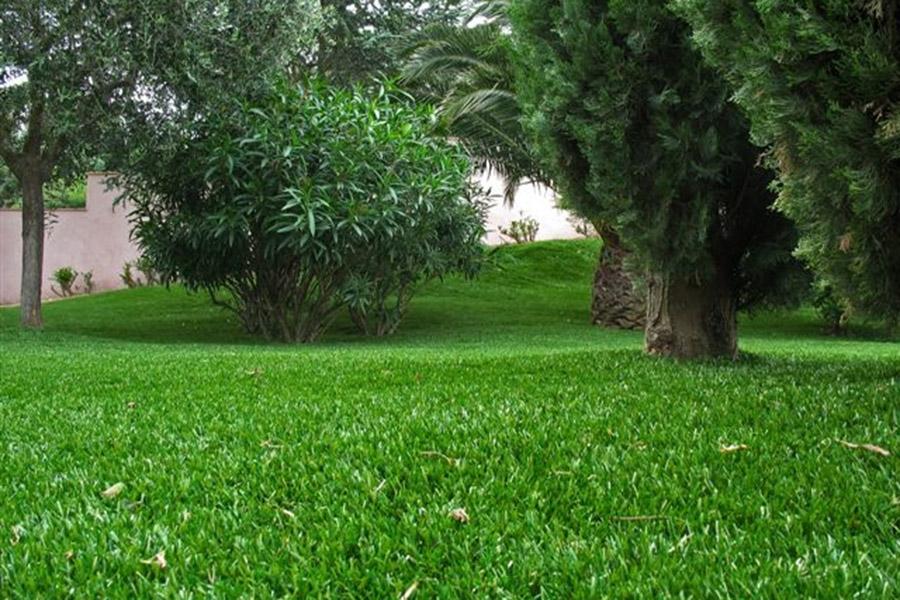 Remplacer une pelouse par du gazon synth tique sans entretien for Quand semer une pelouse