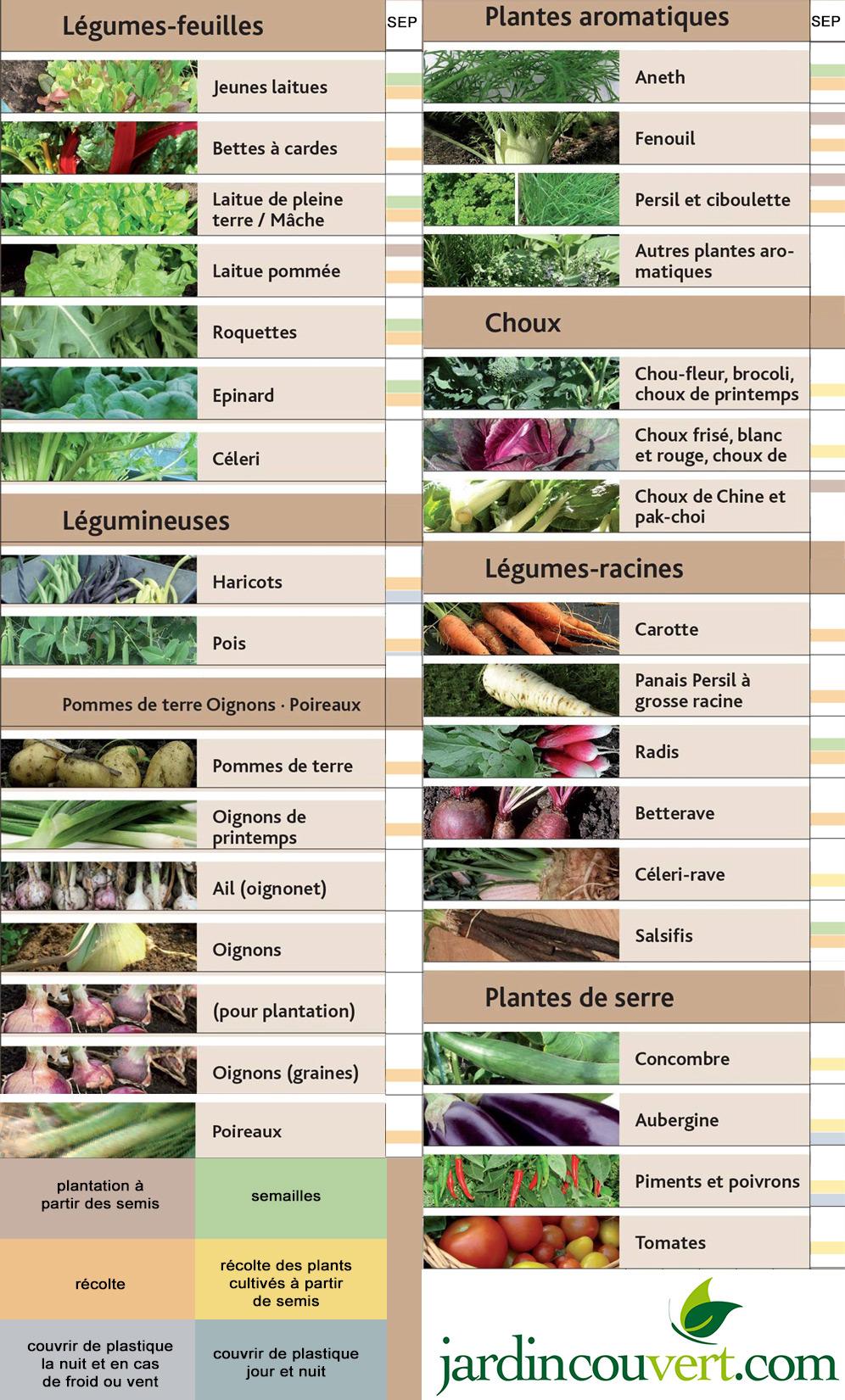 Calendrier de plantations et semis septembre