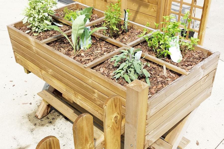comment organiser son potager en d but d ann e blog jardin couvert conseils jardinage et. Black Bedroom Furniture Sets. Home Design Ideas