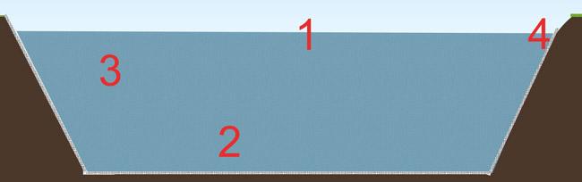 Niveaux de bassins et plantes adaptées