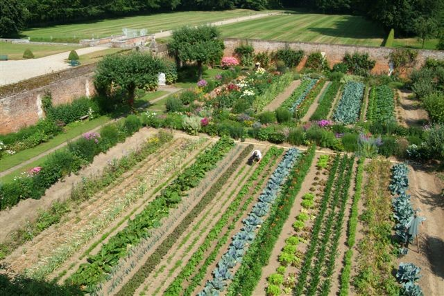 comment organiser son potager en d but d ann e blog