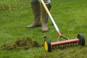 scarifier pelouse