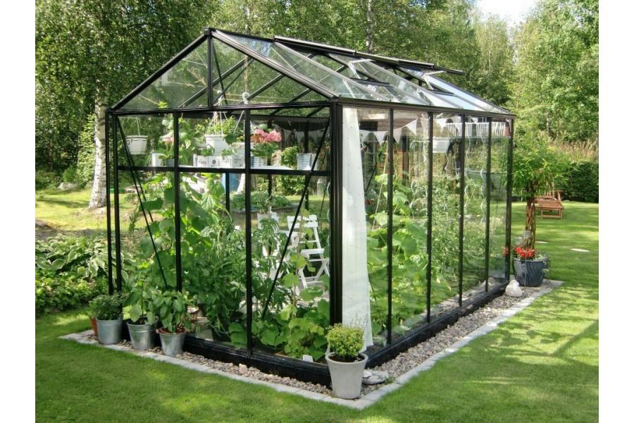 Comment cultiver des tomates sous serre de jardin - Accessoires serre de jardin ...